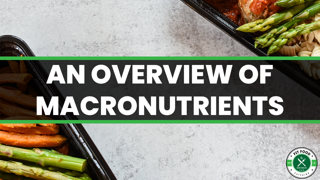 An Overview of Macronutrients